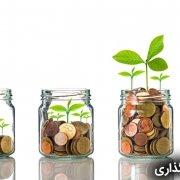 هوش مالی و سرمایه گذاری